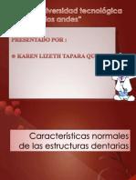 Caracteristicas Normales de Las Estructuras Dentarias