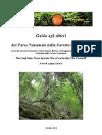 Riconoscimento foreste casentinesi