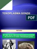 TOXOPLASMA GONDII MARZO