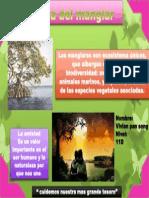 Día del manglar