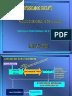 MAPA MENTAL DE MEDIO DE DEIAGNOSTICO, CITOSCOPIA, ANGEOGRAFIA RENAL, BIOPSIA PROSTÁTICA, PIELOGRAFIA, RADIOGRAFIA RENAL