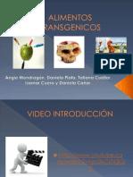Alimentos transgénicos- Ética