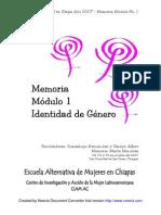 Memoria Identidad de Género Mod 1 año 2007