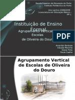 Agrupamento Vertical Oliveira Douro