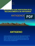 Presentacion_antigenos