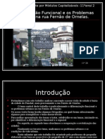 Diferenciacao Funcional e Os Problemas Urbanos Na Rua Fernao de Ornelas