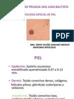 Clase Dermatopatologia Octubre 2012