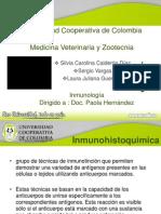inmunohistoquimica