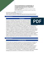 El papel funcional de la calcineurina en la hipertrofia español.docx