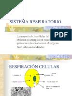Sistema Respiratorio.pptll