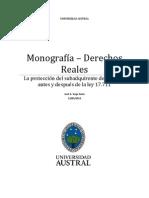 Monografia Reales.docx