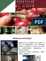 BENEFICIO ECOLOOGICO.pptx
