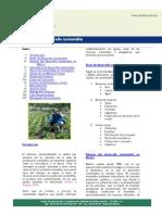 Desarrollo_20sustentableNL
