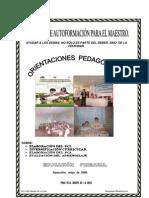 ORIENTACIONES PEDAGOGICAS PRIMARIA