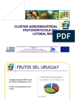Cluster Agroindustrial Uruguay