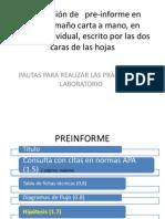 preinforme (2)
