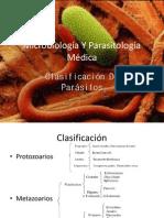 Clasificacion de Parasitos
