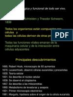 01.TeoriaCelular