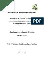 original_Roteiro_Necropsia.pdf
