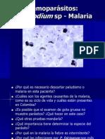 Malaria y Babesia 2013