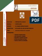 Investigacion Formativa III Unidad -Patologia II