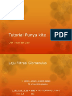 Tutorial Punya Kite