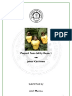 Cashews Nut Project Report Feasibility