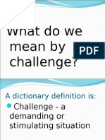 What Do We Mean by Challenge 2