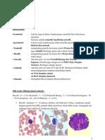 histologi sel pmn, hasil koh tzenk gram