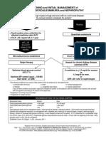 Basic Guidelines Microalbumand referat
