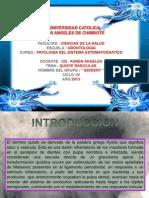Diapositivas III Unidad