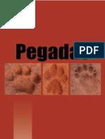 como reconhecer pegadas de animais