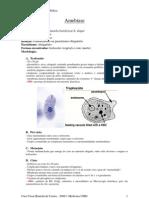 45175086 Resumo Parasitologia Medica Protozoarios