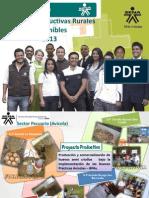 Gestión U.P -JRE 2013 1° semestre (2)