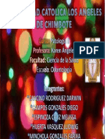 Monografia Pato 3unidad