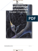 IVMS Neuro-Neurotransmitters Overview / Review