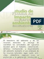 presentacion impacto