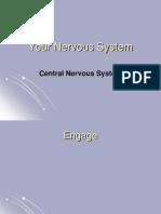 Nervous System CNS