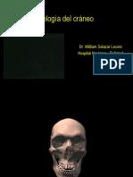 radiografia-del-craneo-1202608101762920-3