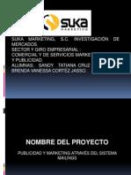 Presentacion Del Proyecto Suka 2010