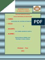 Investigacion Formativa de Pato III