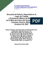 Encuesta de Salud y Seguridad en El Lugar de Trabajo y Evaluacion Medica en Minera de Cananea