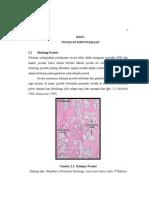 bph usu.pdf
