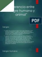Diferencia entre sangre humana y animal.pptx