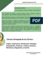 1. CLOROSIS VARIEGADA Moramay Naranjo.pdf