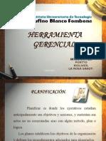 Planificación, Analisis de la organización,Gestion y Negociación
