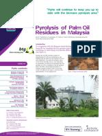 Pyrolysis Palm