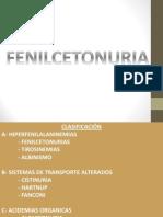 Felincetonuria Akkiiiii (4) - Copia