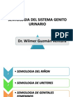 Semiologa Del Sistema Genitourinario