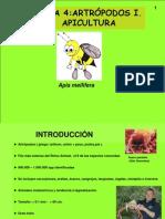 Apicultura Fosiles
